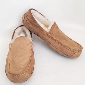 Ugg Ascot Mens Chestnut Slippers 5775